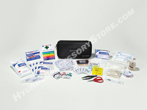 hyundai_preimum_first_aid_kit.jpg