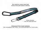 Hyundai Seatbelt Tether